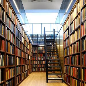 Библиотеки Анучино